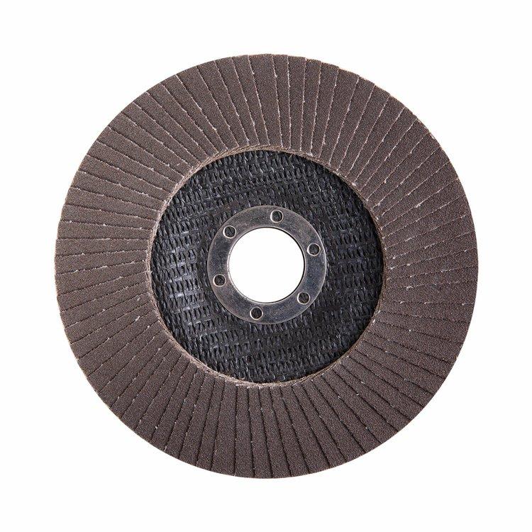 Круг лепестковый торцевой Дніпро-М Р120, 5 шт/уп фото №3