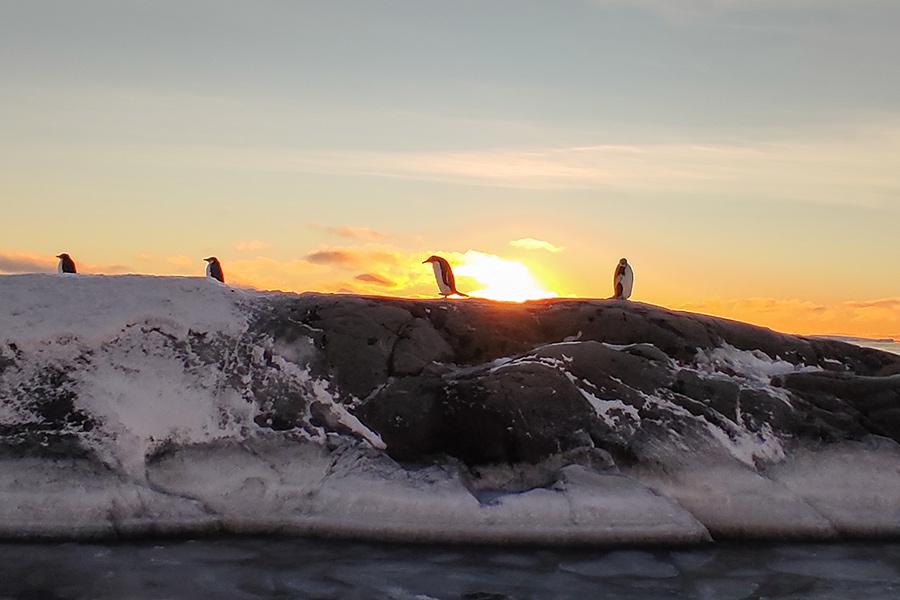 Як український полярник врятував дослідницький човен - Фото 11