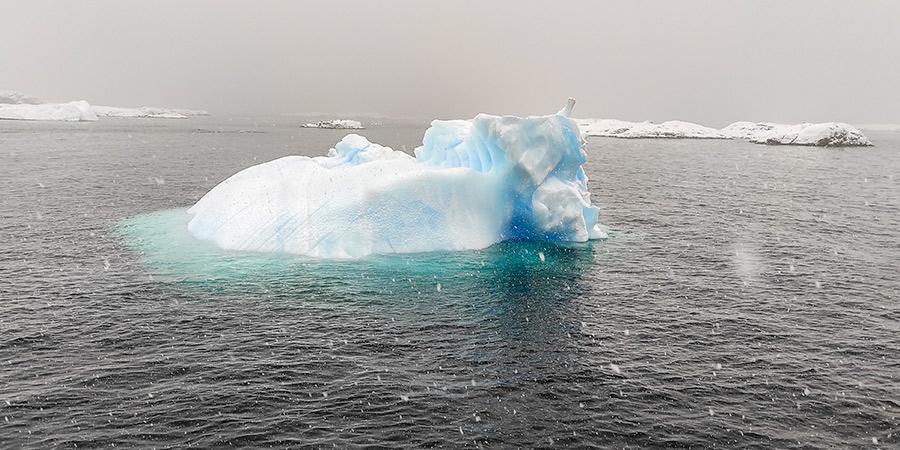 Перші айсберги